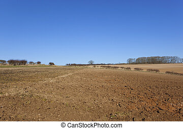 plow soil and blue sky - blue sky over plow soil and...