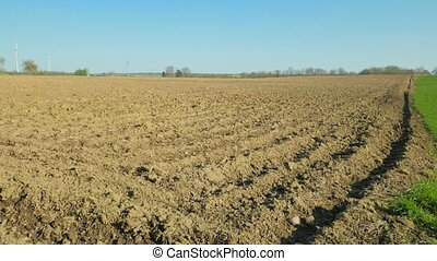 Plowed and green field in spring