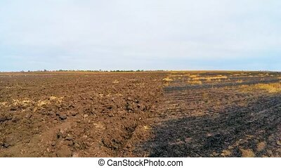 plowed and untouched parts of the field