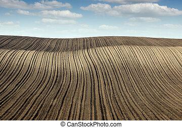 plowed fertile field panonia landscape