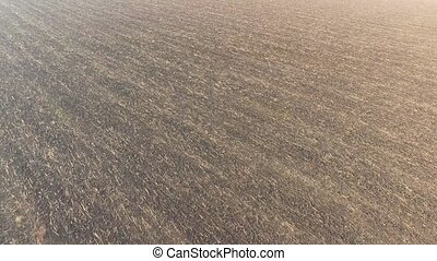 Plowed fertile field with a small amount of hay - Shooting...