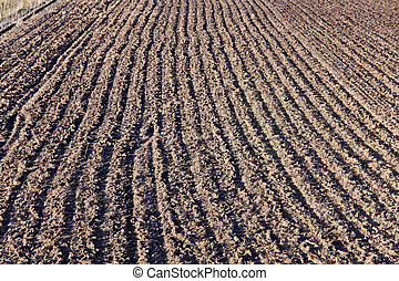 Plowed field, aerial view