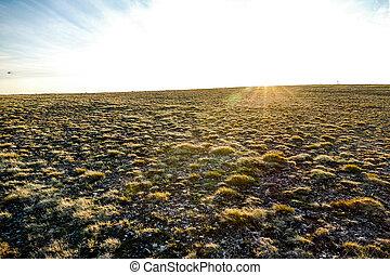 plowed field in spring, in Norway Scandinavia North Europe