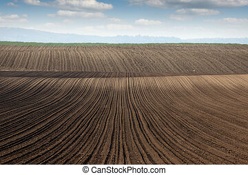 plowed field panonia landscape