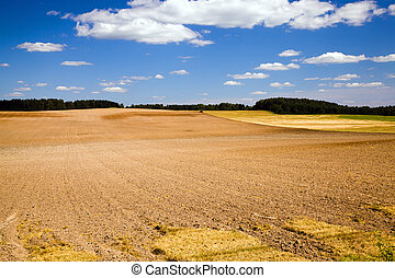 plowed field - Plowed after wheat cleaning an agricultural ...