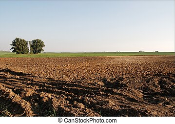 Plowed field - Plowed brown soil in the countryside