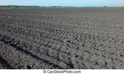 Plowed field ready for sowing. Omsk region. Russia