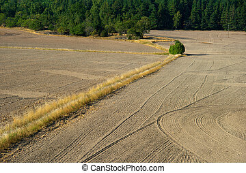 Plowed field seen from a high angle view