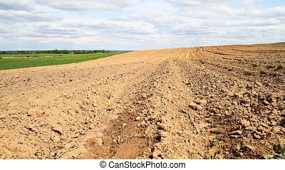 plowed field, spring