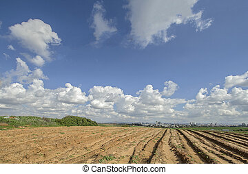 Plowed field under blue cloudy sky.