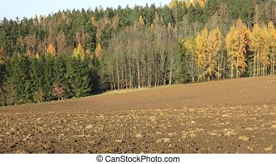 Plowed fields surrounded by forests. Autumn landscape -...