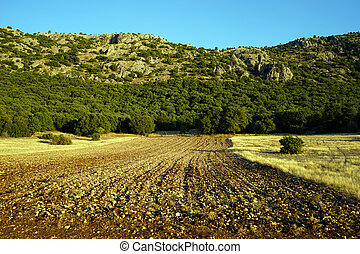Plowed land and mount near Egirdir lake, Turkey