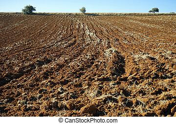 Plowed land