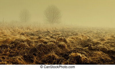 Plowed land - Lithuanian landscape come the fall when the ...