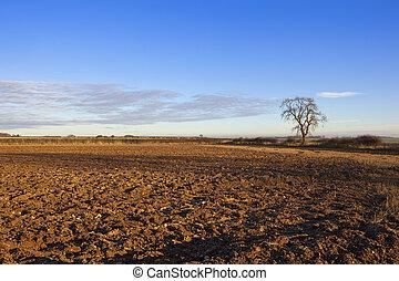 plowed soil in autumn