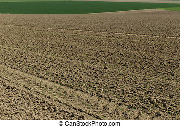 Plowed soil on agricultural fields in spring. Soil texture background