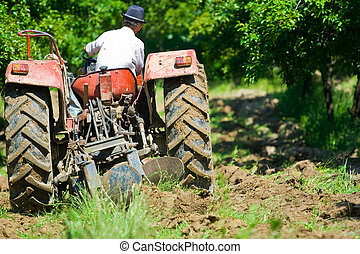 Plowing - Old farmer plowing between trees in an orchard