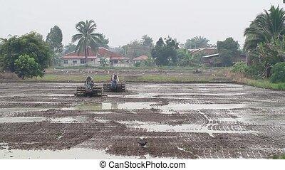 plowing paddy field 1