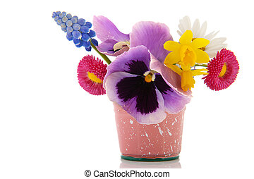 Mixed garden bouquet in little bucket isolated over white background
