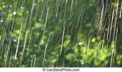 pluie, fort