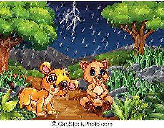 pluie, ours, lion, forêt, sous, bébé, dessin animé
