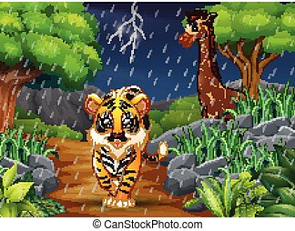 pluie, tigre, girafe, forêt, sous, dessin animé