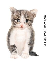 pluizig, watercolor, imitatie, kitten., painting.