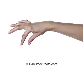 pluk, vrouw, hand