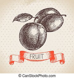 plum., bosquejo, eco, mano, fondo alimento, fruits, dibujado