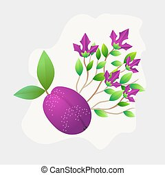 Plum fruit whole with green leaves isolated on white background. Vector Illustration