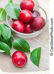 plum with green leaves in