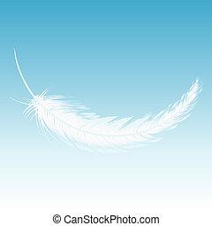 pluma, cielo, blanco, otoño