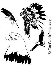 plumas, de, un, águila
