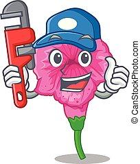 Plumber petunia in a mascot flower basket