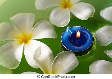 plumeria, flores, cheirado, velas