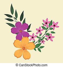plumeria flowers decorative image