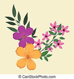 plumeria flowers decorative image