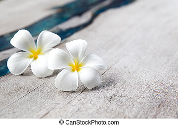 Plumeria flowers on wooden textured background with blue glass.