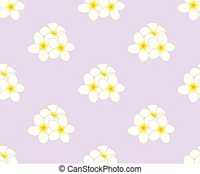 Plumeria, Frangipani Seamless on Purple Background
