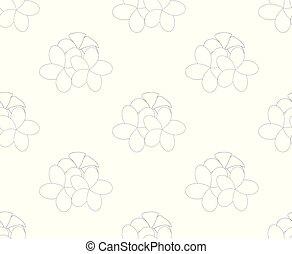 Plumeria, Frangipani Seamless on White Background