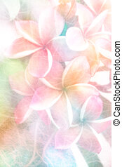 Plumeria or Frangipani flower on mulberry paper made pastel ...
