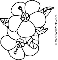 Plumeria - vector illustration sketch hand drawn with black lines, isolated on white background