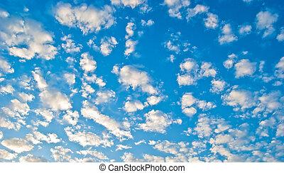Plumose clouds