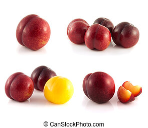 Plums collection isolated on white background