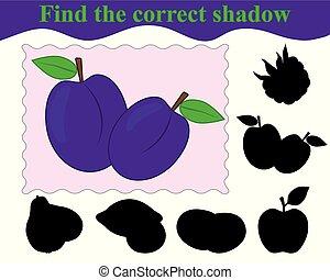 plums., illustration., education., trouver, jeu, vecteur, children., ombre, correct
