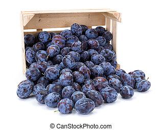 Plums (Prunus) in wooden crate
