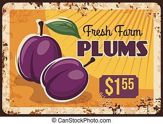 Plums rusty metal plate, fruits food farm market