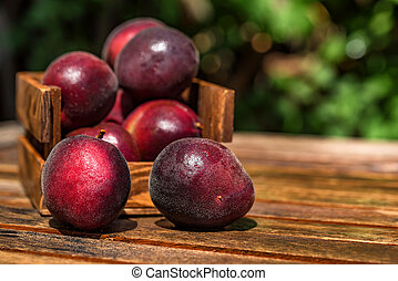 Pluot, mix of plum and apricot in wooden box close