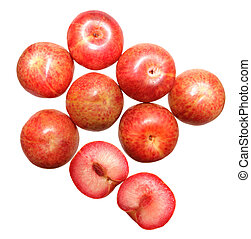 Pluot Plum