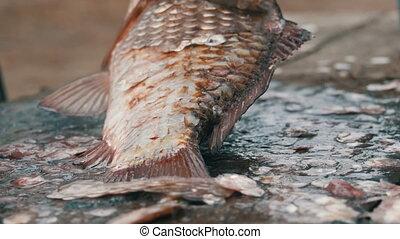 plus loin, eau douce, pêcheur, balances, cooking., a, il, ...